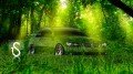 BMW-Green-Grass-Car-v2-2013-HD-Wallpapers-design-by-Tony-Kokhan-[www.el-tony.com]