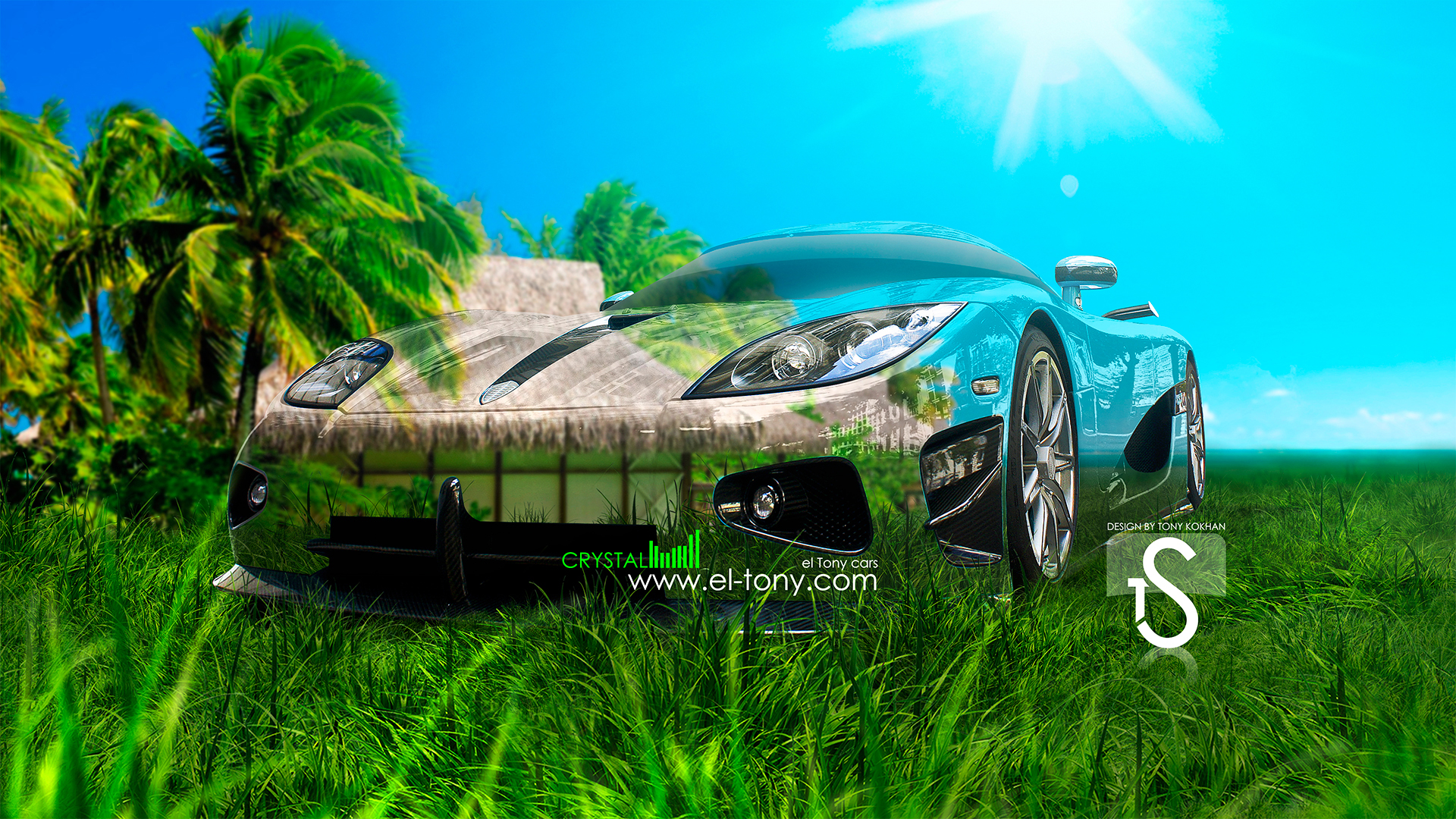 Captivating Beau Koenigsegg CCXR Crystal Car 2013 Nature Green Grass HD Wallpapers  Design By Tony Kokhan 1920