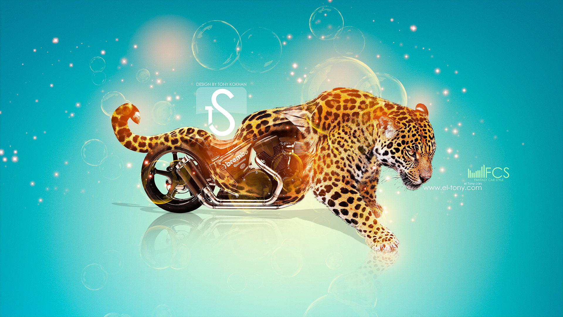 Moto Honda Switchblade Fantasy Leopard 2013 HD Wallpapers .