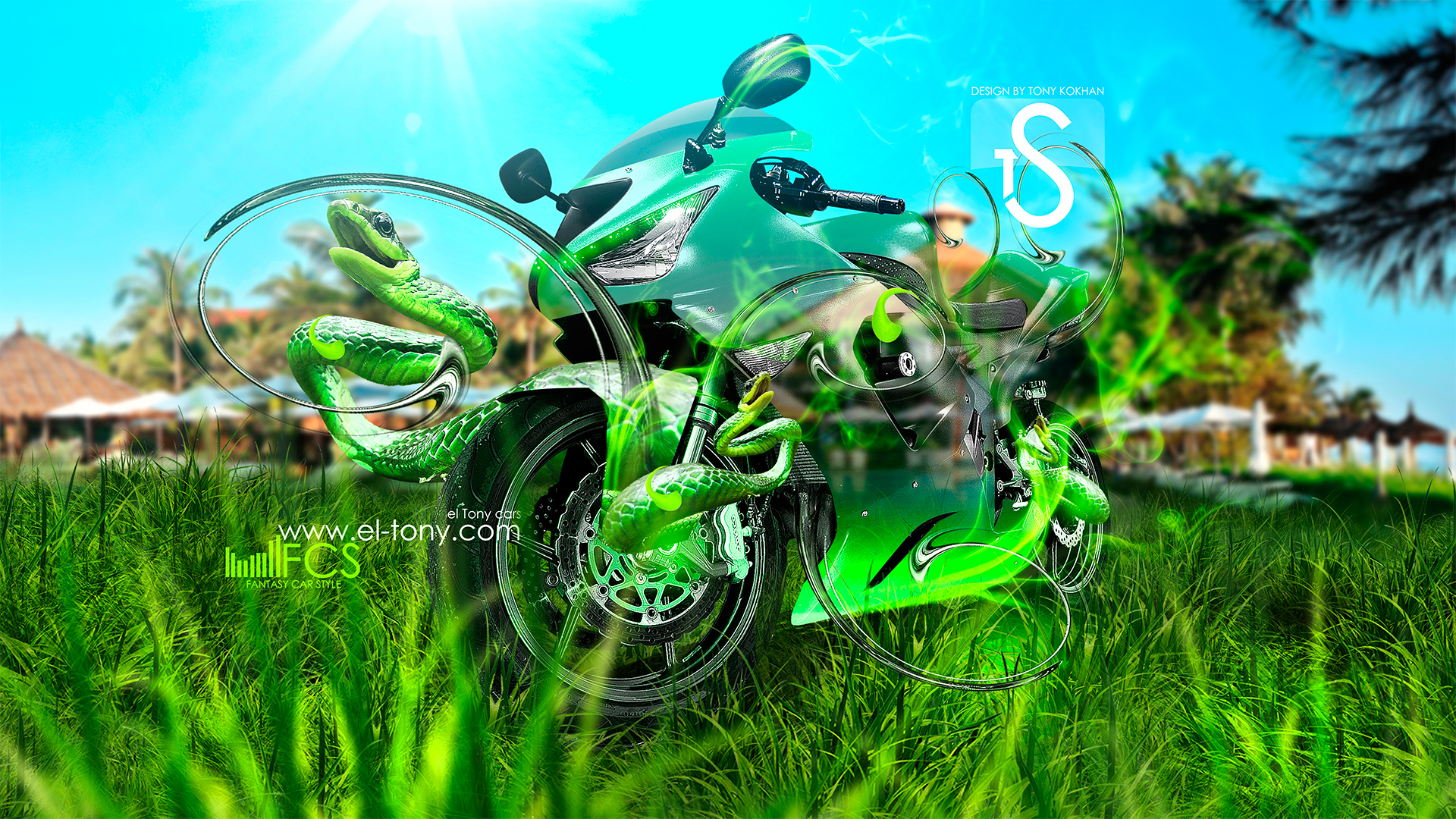 ... Moto Kawasaki Fantasy Green Snake Smoke Car 2013  ...