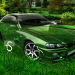 Nissan Skyline GTR R34 Crystal Nature Car 2013