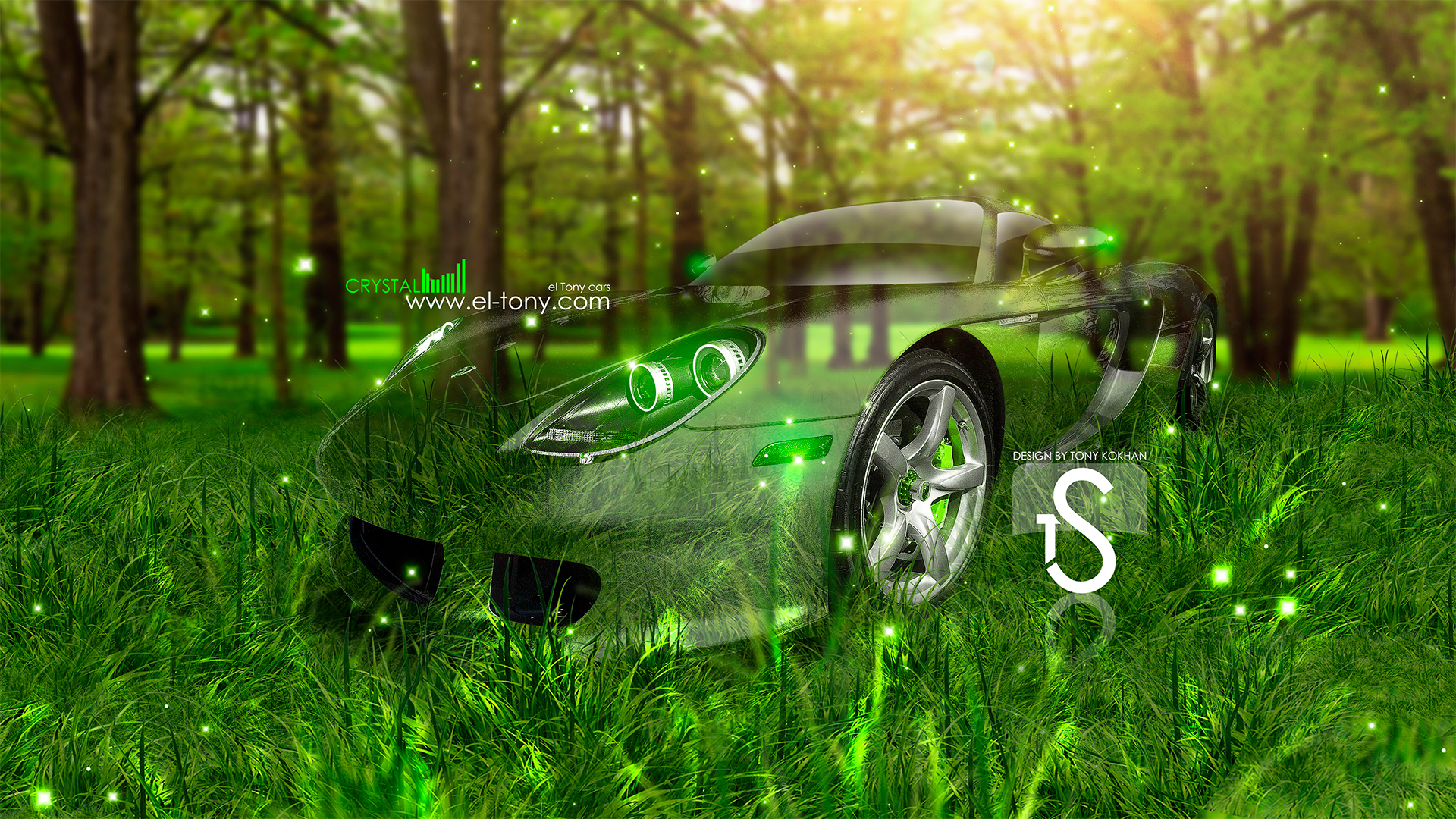Porsche Carrera GT Crystal Car  2013 Nature Green Grass HD Wallpapers Design By Tony Kokhan [www.el Tony.com]