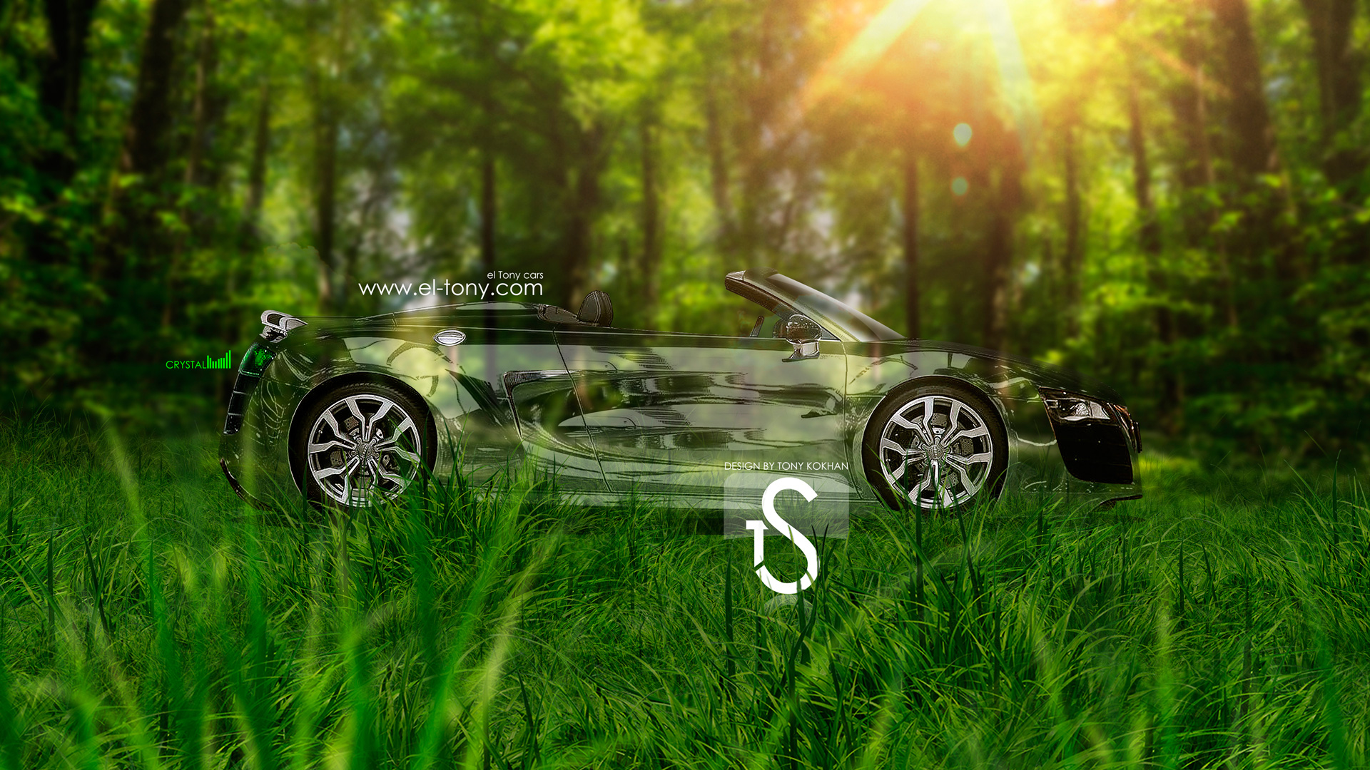 Audi R8 Crystal Nature Car Side 2013 HD  ...