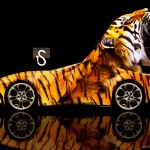 BMW Tiger Car 2013