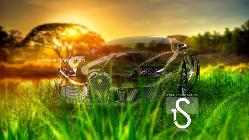 Bugatti-Veyron-Crystal-Nature-Car-Sunset-2013-HD-Wallpapers-design-by-Tony-Kokhan-[www.el-tony.com]