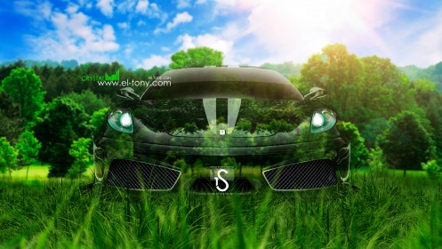 Ferrari-F430-Crystal-Nature-Car-2013-HD-Wallpapers-design-by-Tony-Kokhan-[www.el-tony.com]