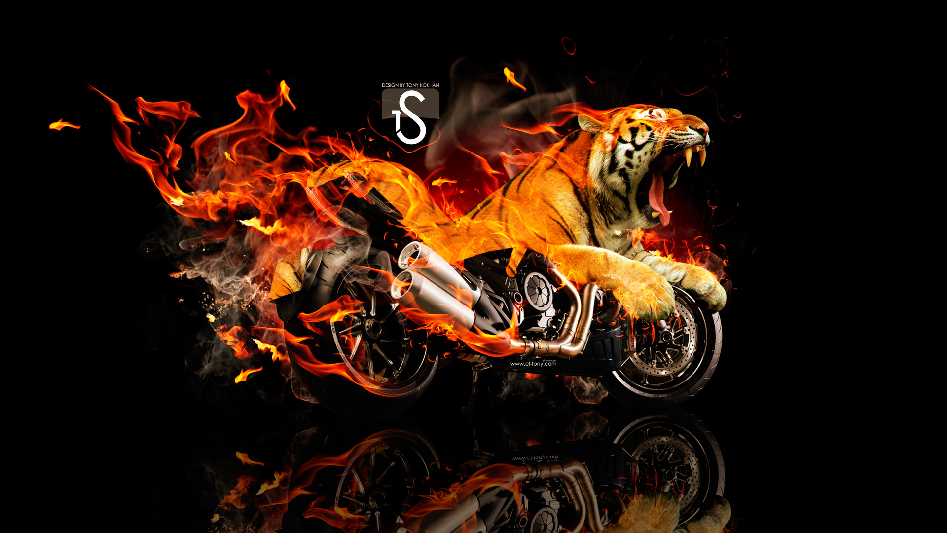 Ducati Diavel Tiger Fire Fantasy 2013