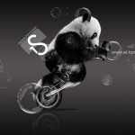 Moto Retro Fantasy Panda Boxing Art 2013