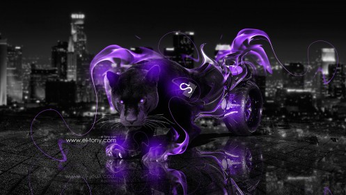 Suzuki-Hayabusa-Fantasy-Panther-City-Violet-Fire-2013-HD-Wallpapers-design-by-Tony-Kokhan-[www.el-tony.com]