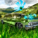 Chevrolet Biscayne 1965 Fantasy Crystal Flowers Car 2013