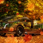 Morgan Aeromax Retro Crystal Nature Autumn Car 2013