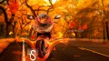 Moto-Kawasaki-RR-Fire-Car-Autumn-Nature-2013-design-by-Tony-Kokhan-[www.el-tony.com]