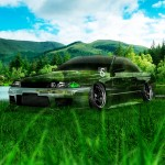 Nissan Skyline GTR R32 JDM Crystal Nature Car 2013