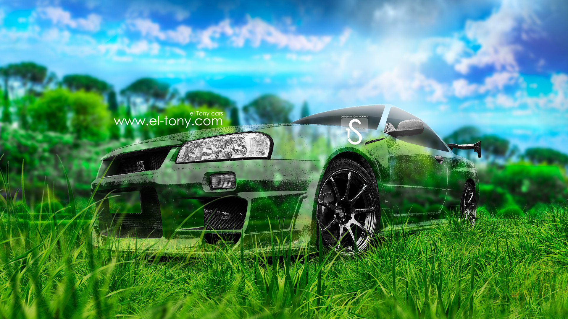 Nissan Skyline GTR R34 JDM Crystal Nature Car 2013