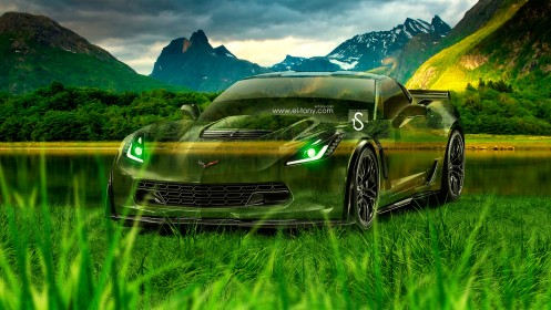Chevrolet-Corvette-Z06-Crystal-Nature-Car-2014-design-by-Tony-Kokhan-[www.el-tony.com]