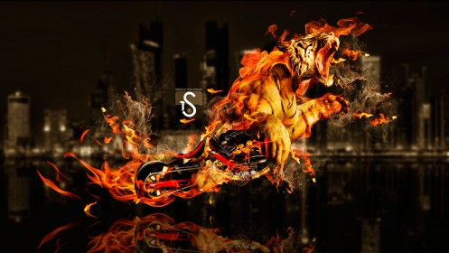 Fantasy-Moto-Tiger-Power-Fire-2014-HD-Wallpapers-design-by-Tony-Kokhan-[www.el-tony.com]