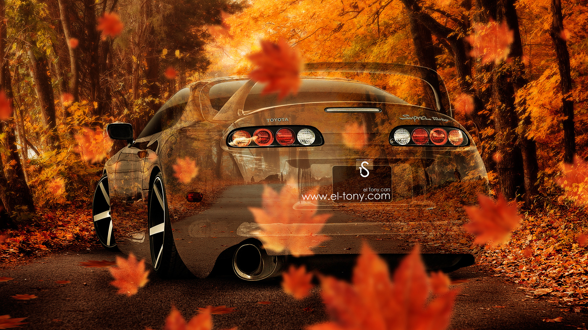 Ordinaire Toyota Supra JDM Crystal Nature Autumn Car 2014