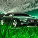 Audi S5 Crystal Nature Car 2014