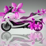 Mini Moto Flowers Bike 2014