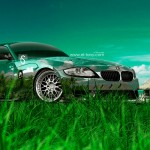BMW Z4M Crystal Nature Car 2014