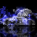 Bugatti Veyron Fantasy Tiger Fire Car 2014