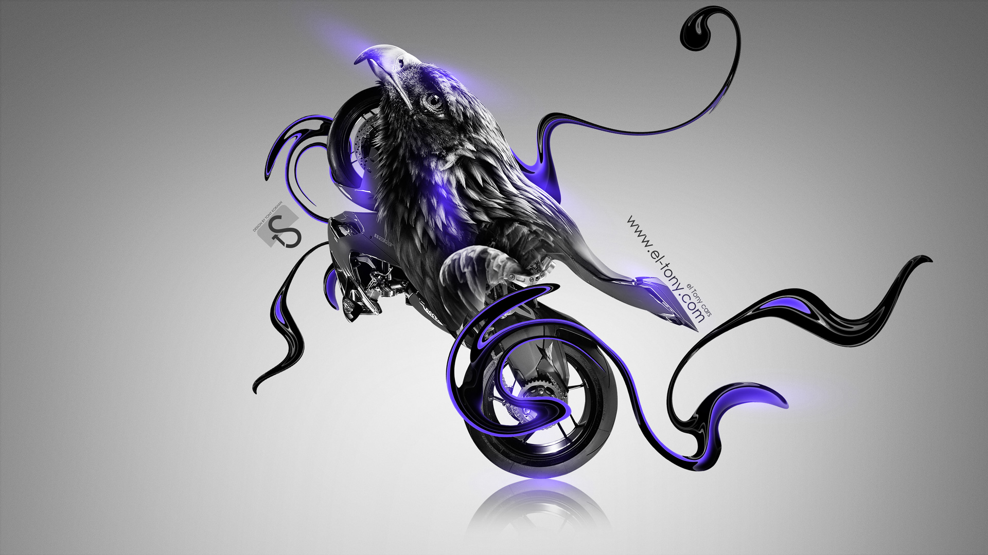 Wonderful ... Moto Ducati 1199 Fantasy Bird Bike 2014 Violet