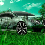 Bentley Continental GT Crystal Nature Car 2014