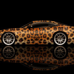 Jaguar XK8 Side Animal Aerography Car 2014