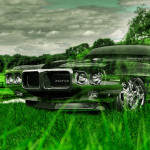 Pontiac Firebird Crystal Nature Car 2014
