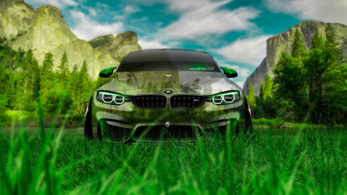BMW-M4-Front-Crystal-Nature-Car-2014-HD-Wallpapers-design-by-Tony-Kokhan-[www.el-tony.com]