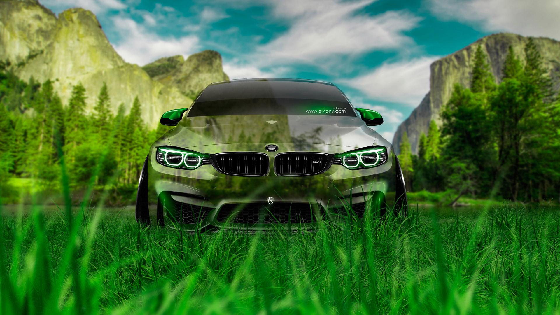 BMW M4 Front Crystal Nature Car 2014