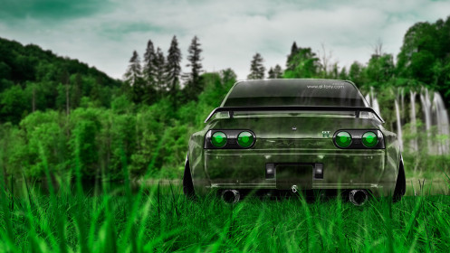 Nissan Skyline GTR R32 JDM Back Crystal Nature