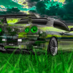 Nissan Skyline GTR R34 JDM Crystal Nature Car 2014