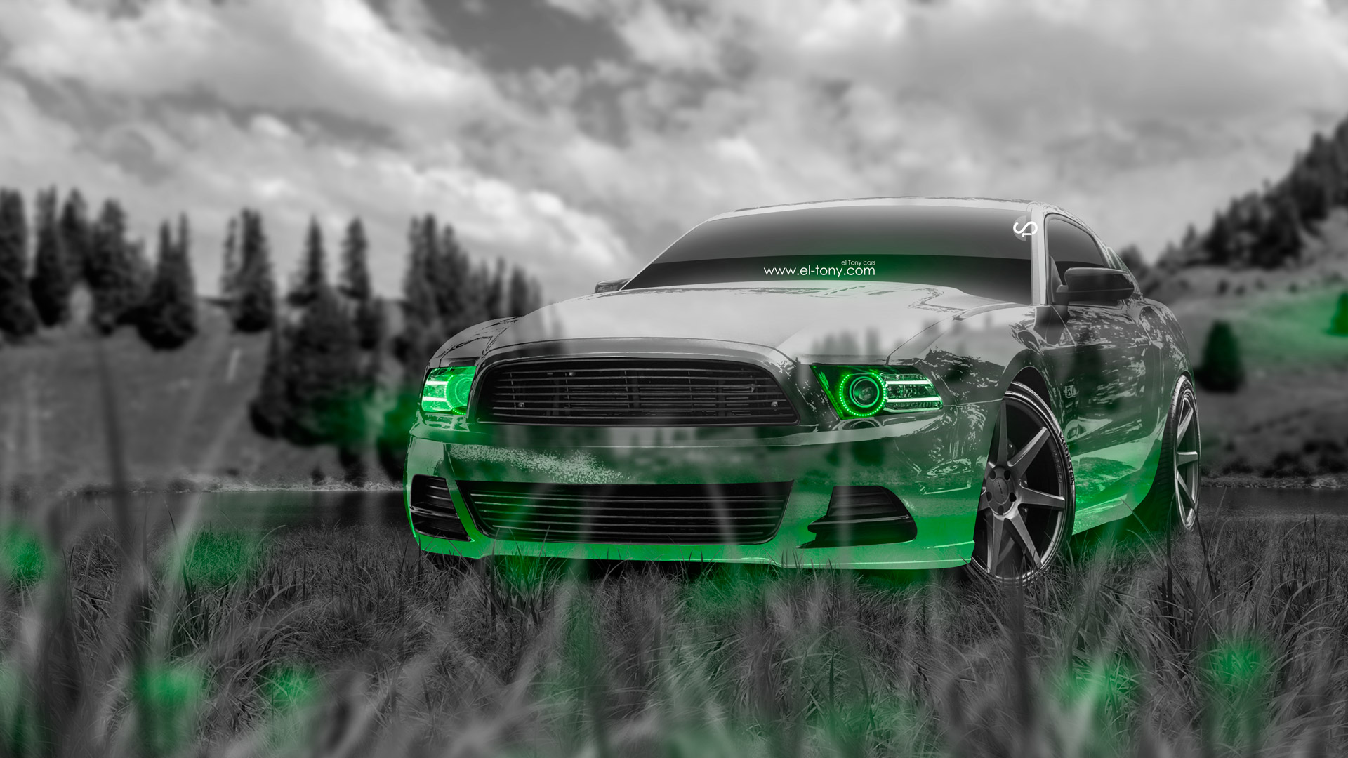 Ford Mustang Gt Muscle Crystal Nature Car 2014 El Tony
