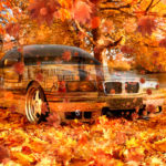 BMW Crystal Nature Autumn Car 2016 Wallpapers 4K
